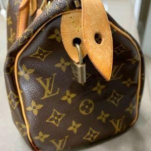 Gorgeous LV Speedy 25 Bag